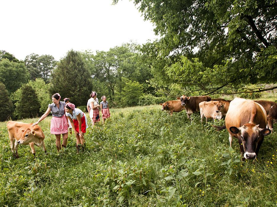 Farm girls Cristina, Jaanki, Jill, Colleen and Ayaka - Conde Nast Travelerhttp://www.pfephoto.com