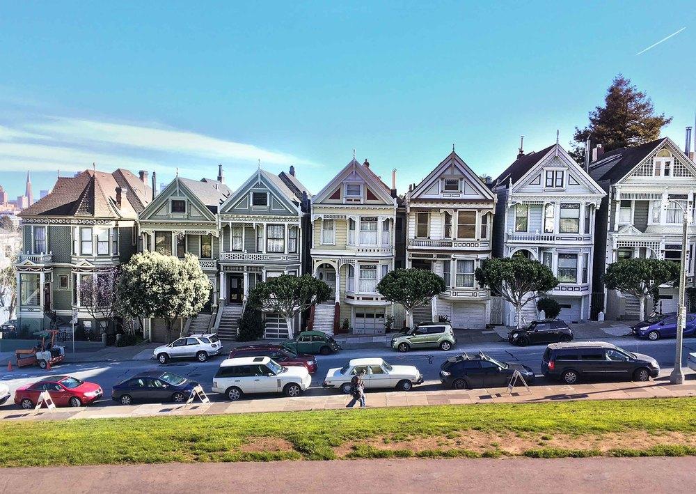 """Les """"Painted Ladies"""", rencontrées lors de ma marche ce matin. San Francisco, c'est si beau!"""