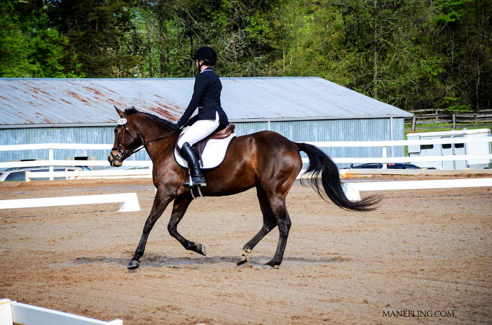 Canter right bend.jpg