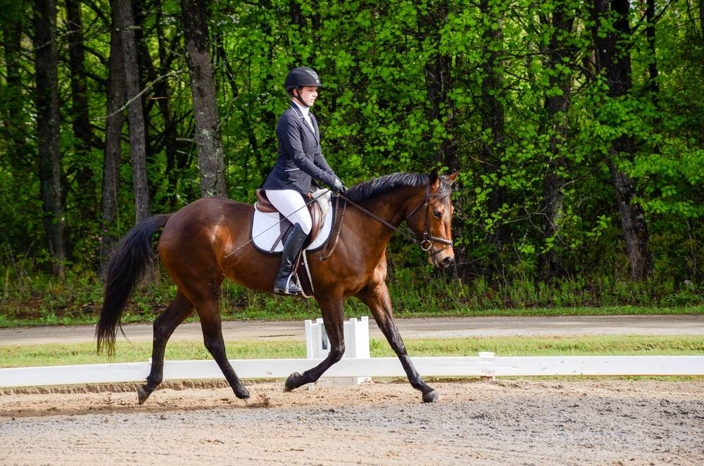 first-horse-show-win