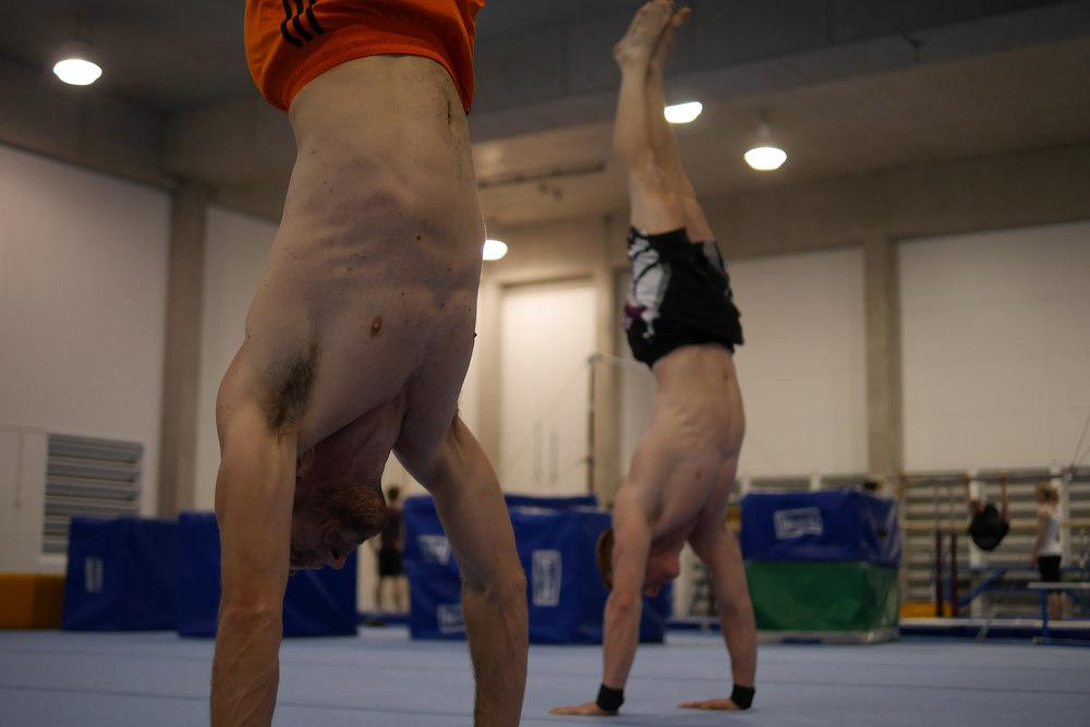 Gymnastics skills and drills