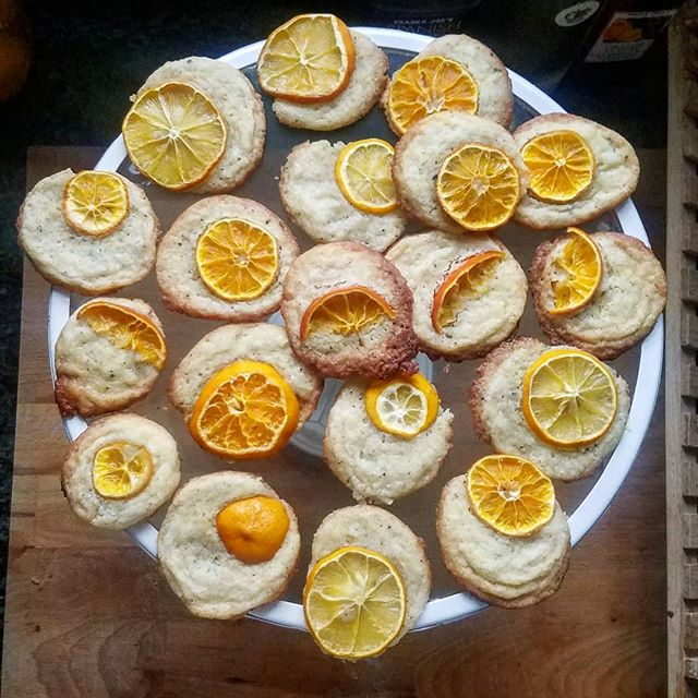 Sweet, salty, peppery, sour. These citrus salt & pepper cookies have it all... . . . . . . . . #cookies #christmascookies #christmascooking #holidays #treats #holidaytreats #meyerlemon #clementines #lemon #orange #salt #pepper