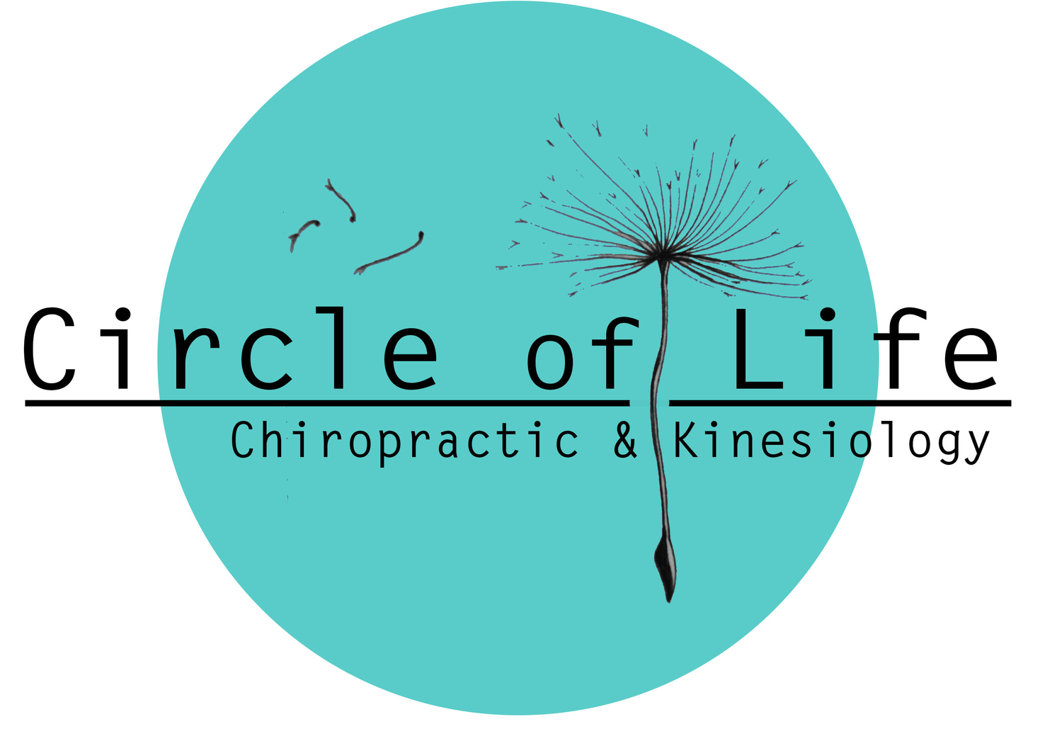 Circle Of Life Chiropractic & Kinesiology