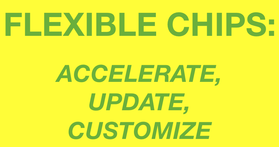 FLEXIBLE CHIPS ACCELERATE UPDATE CUSTOMIZE.png