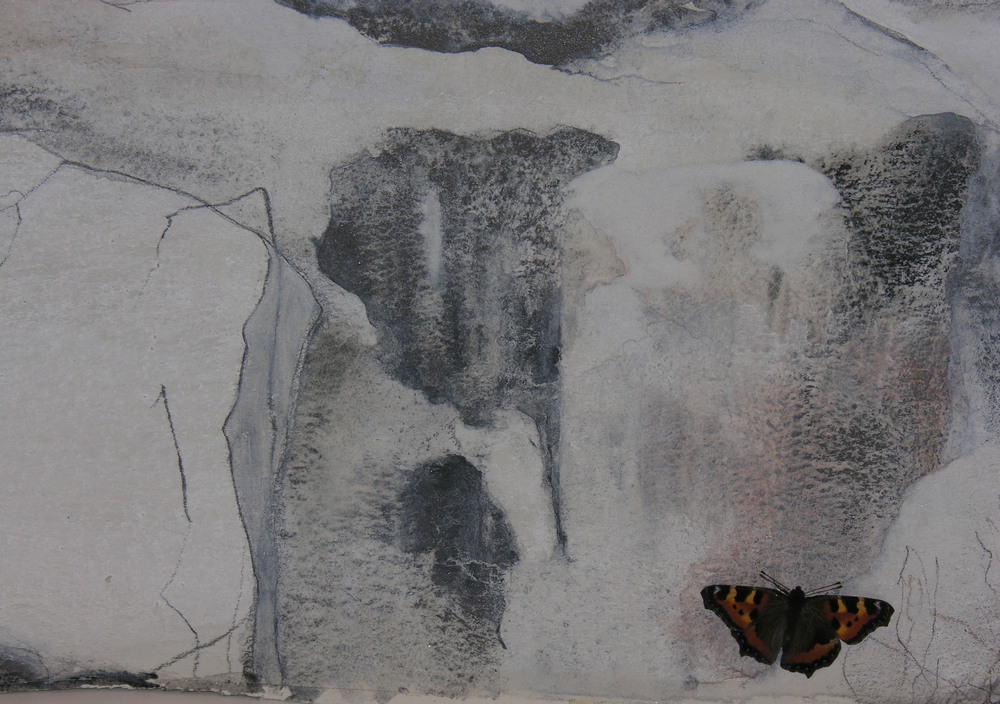 Butterfly in winter (Koli Ryynänen studio)