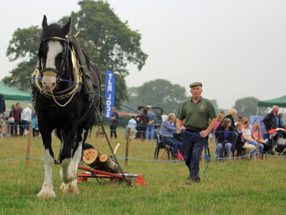 Derbyshire-based Lubrizol have agreed to sponsor the Turnditch and Windley Show for a third year. Penguin PR: public relations, media and communications