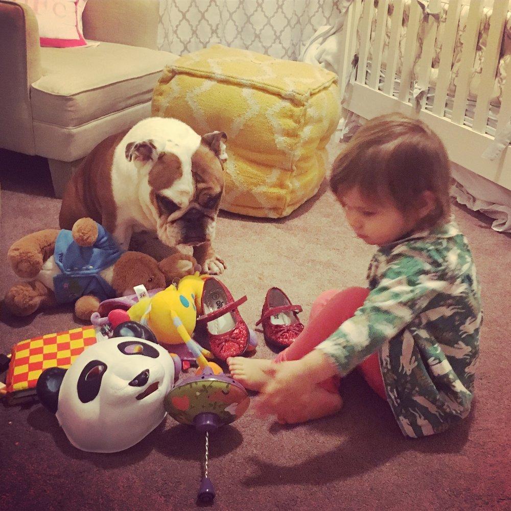"""Bruno sit! Here. Play!"""