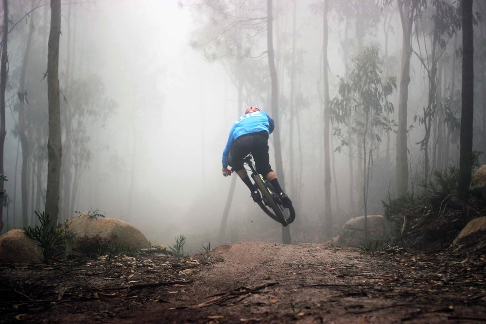 weride into the fog