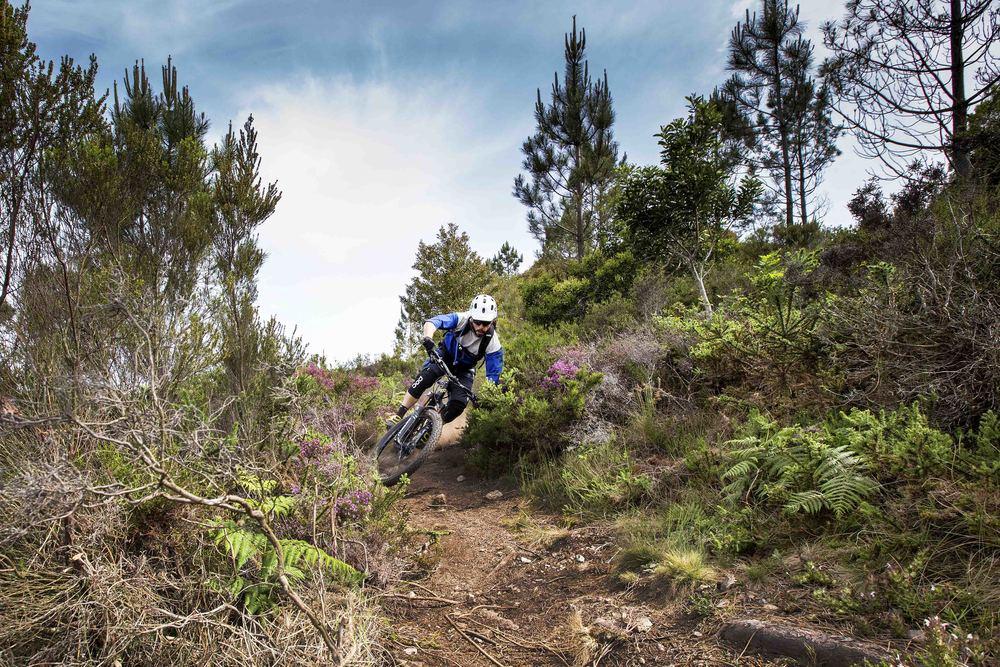 weride bikesport hiting berm