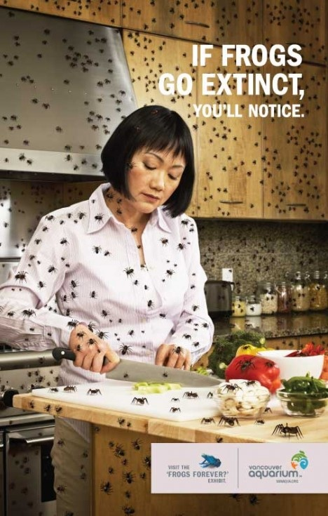castielcampbell :      koli-chan :      bashdoard :      wetookthe405 :     WHAT THE FUCK KIND OF AD IS THIS     A REALLY EFFECTIVE ONE SAVE THE FROGS     SAVE THE GODDAMN FROGS     SAVE ALL THE FUCKING FROGS DAMMIT!     marketing at its best.