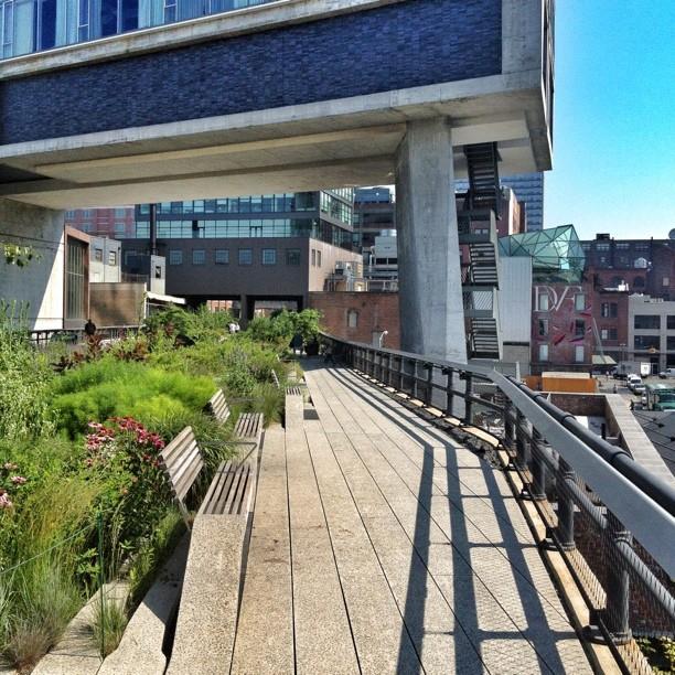 High line park // NYC
