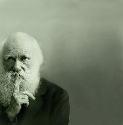mizou: d-d-d: mfs: jabi: Charles Darwin