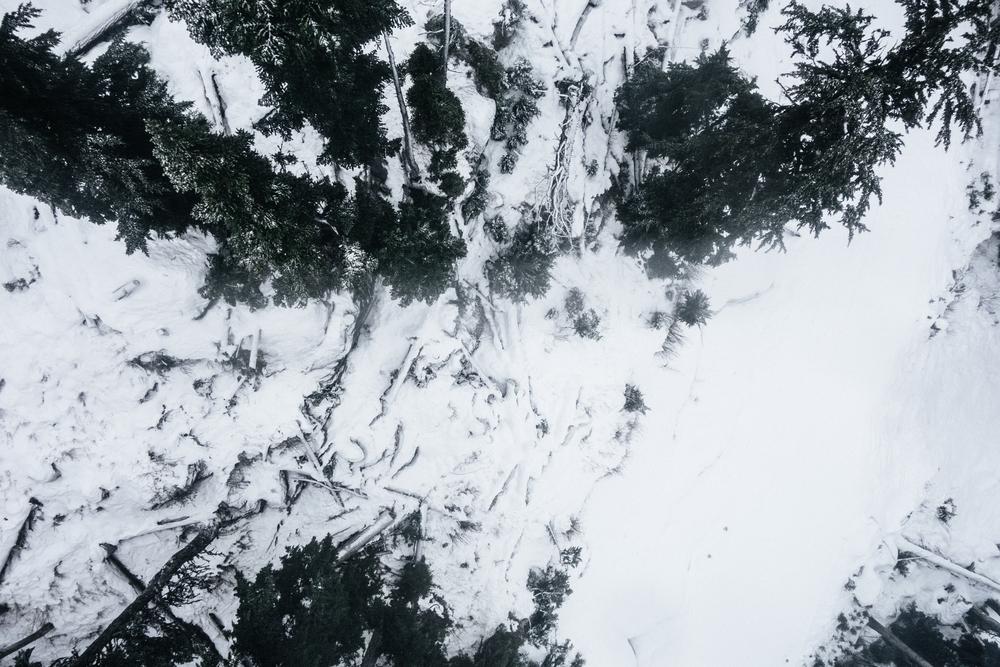 Above - 5.jpg