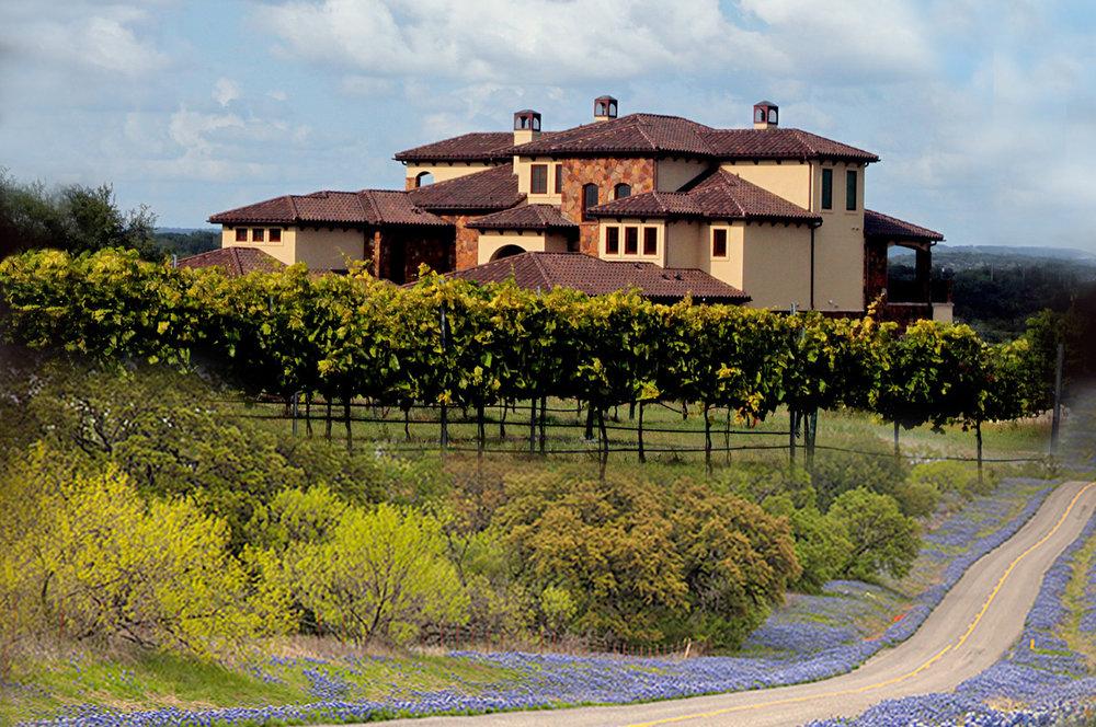 texas wine tours