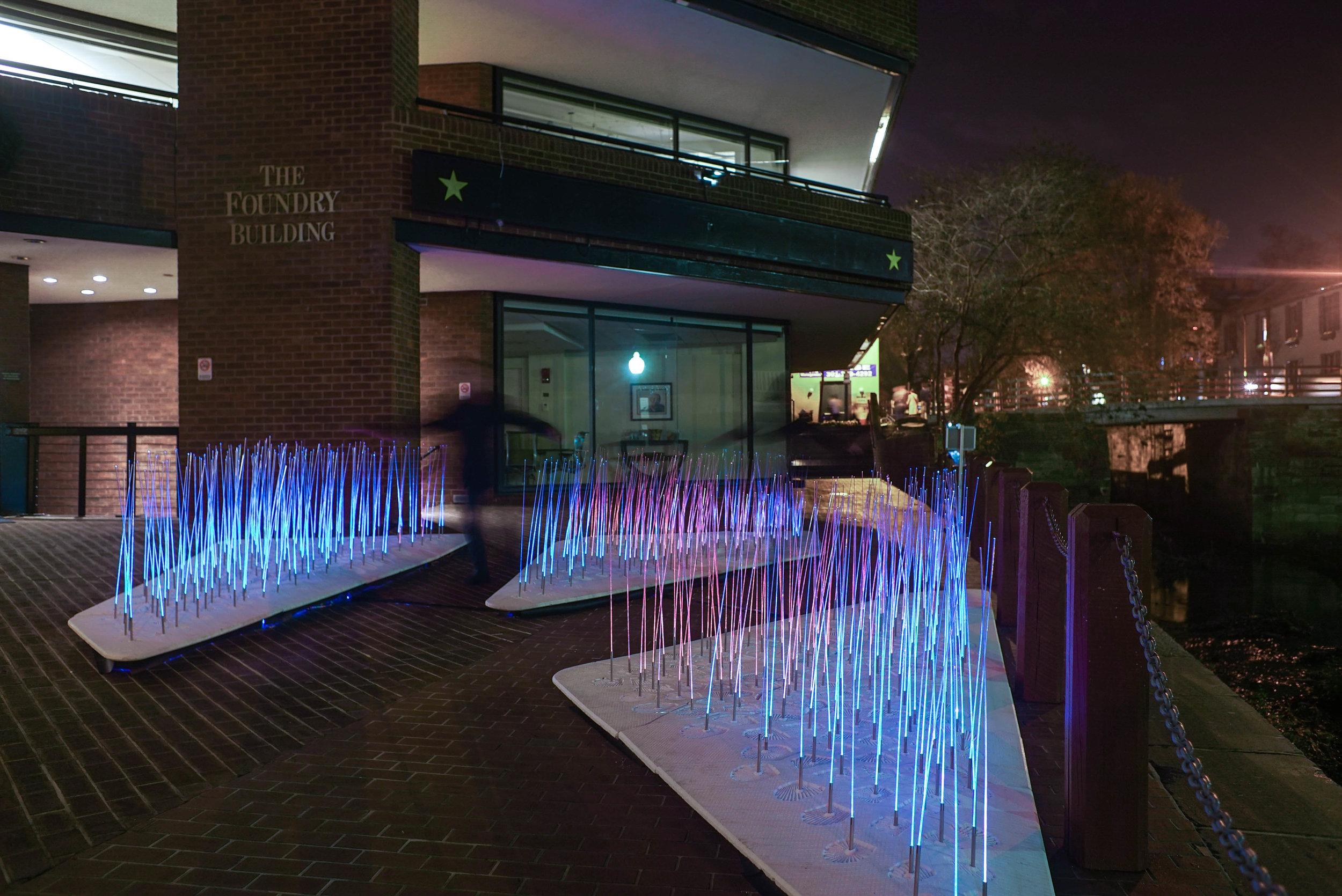 Installation view in Georgetown.