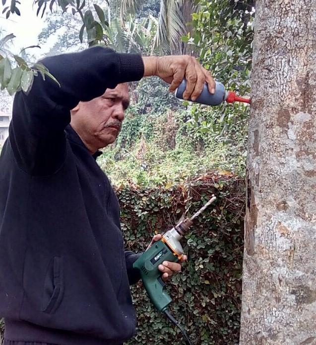 Tajul Bakshi - Assam aromas 1