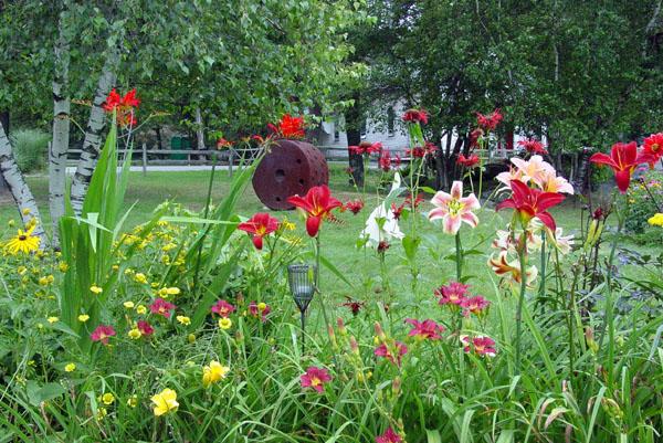 Garden05 012.jpg