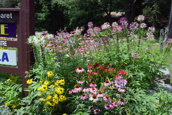 Garden05 027.jpg