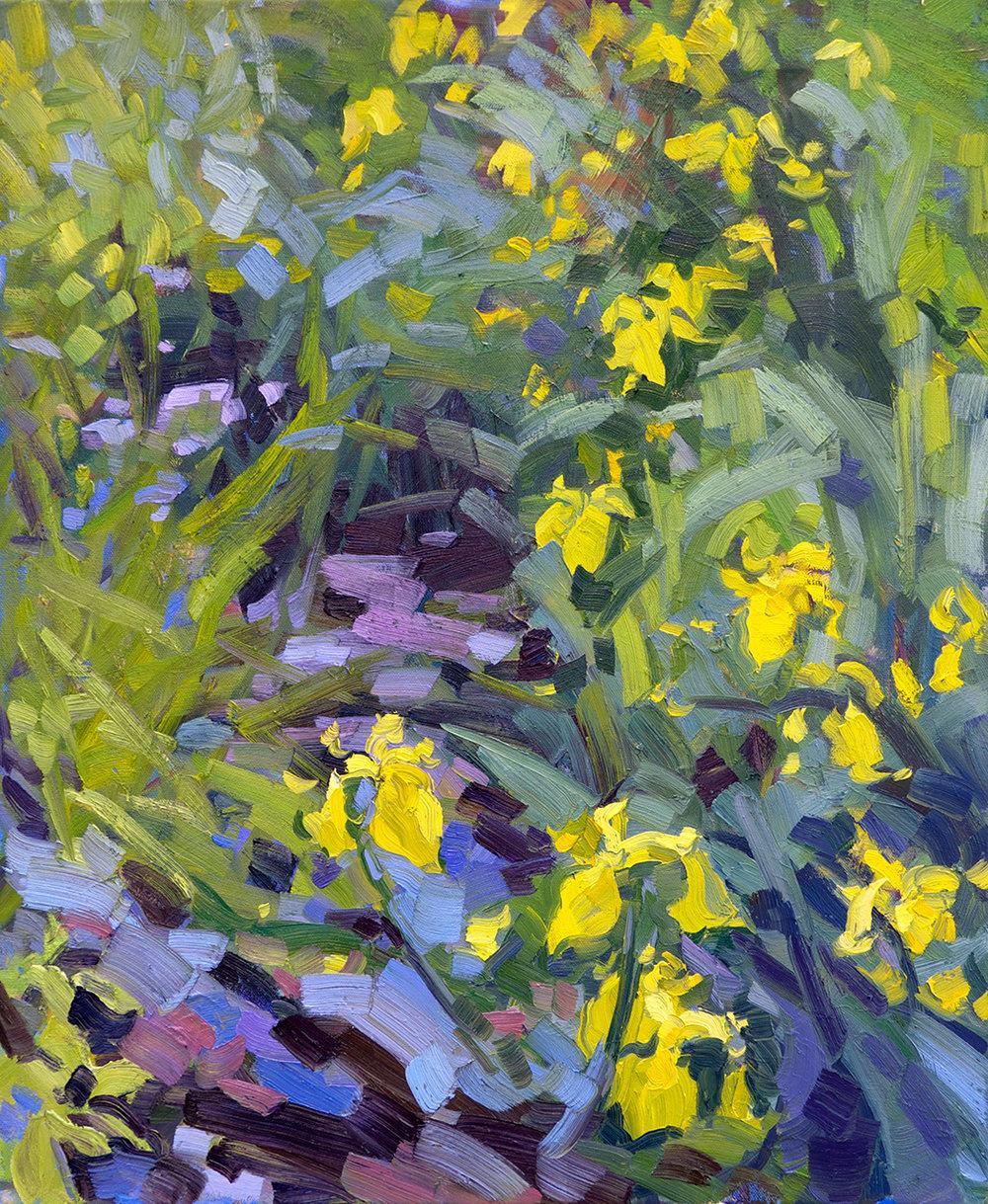 Stream with Flag Irises