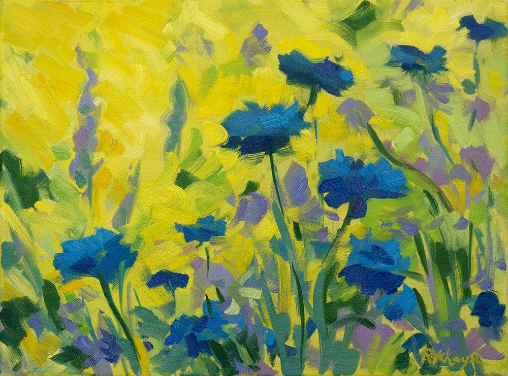 Blue & Yellow Garden