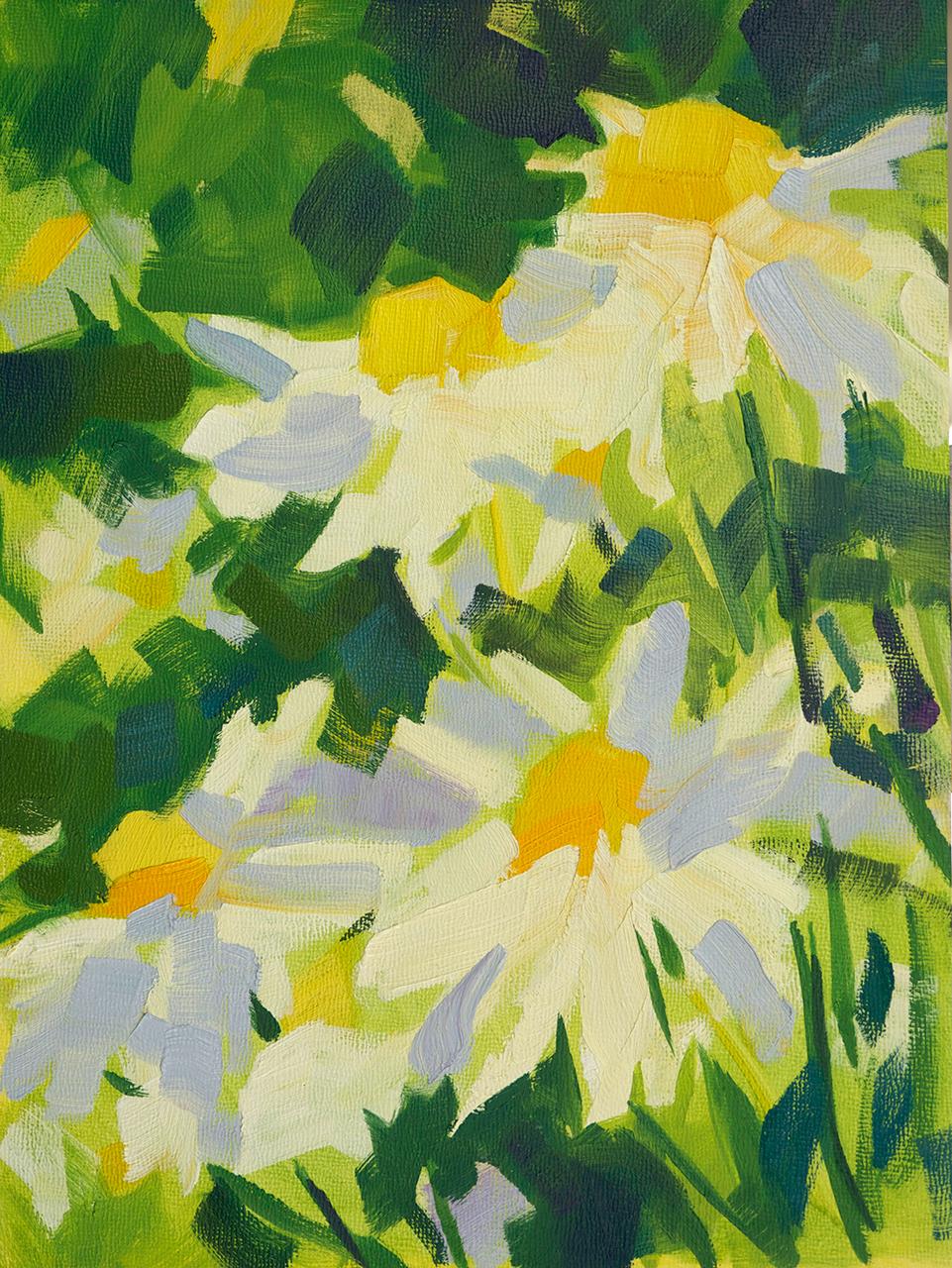 Daisies (#2)