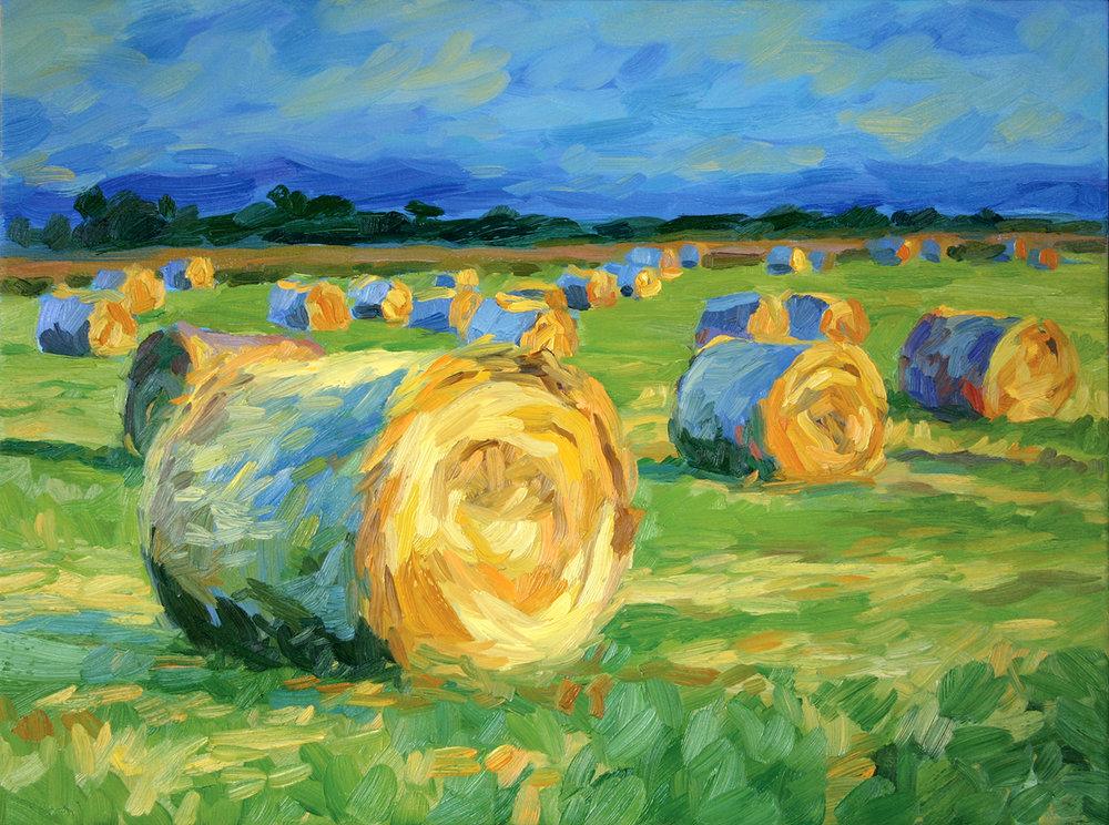 Hay Rolls at Sunset