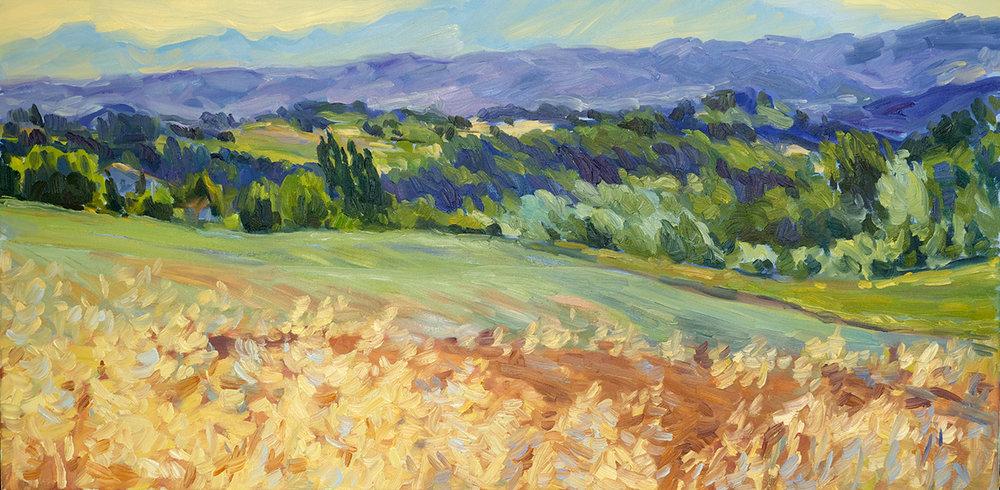Mountain, Field, Oat