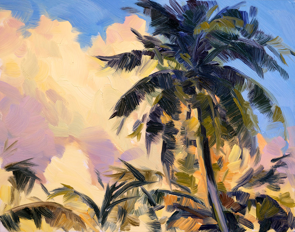 Sunset Clouds with Palms