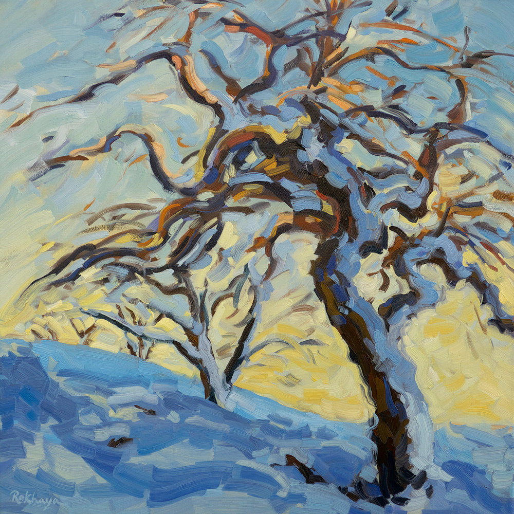 Apple Trees in the Snow