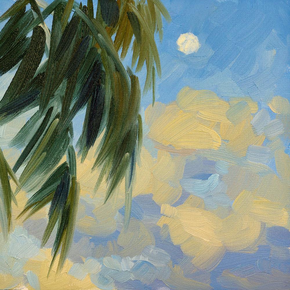 Moon & Palm