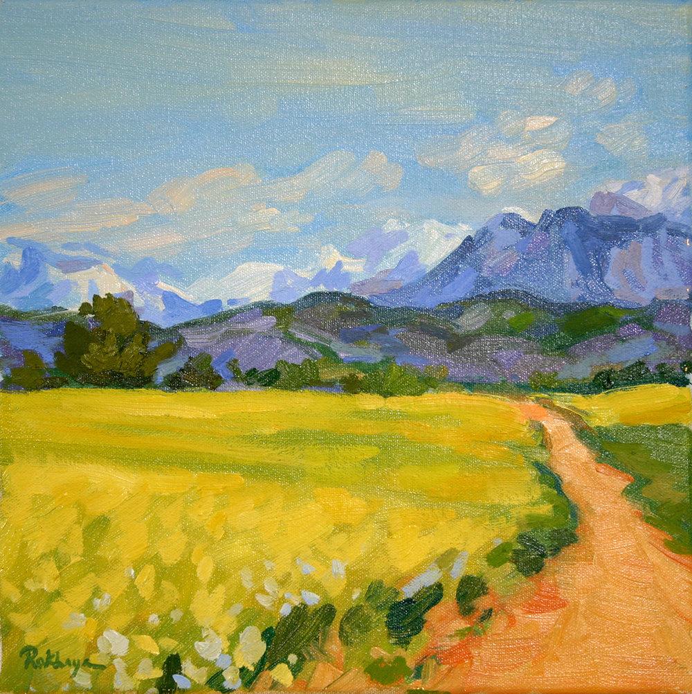 Alpine Yellow Field