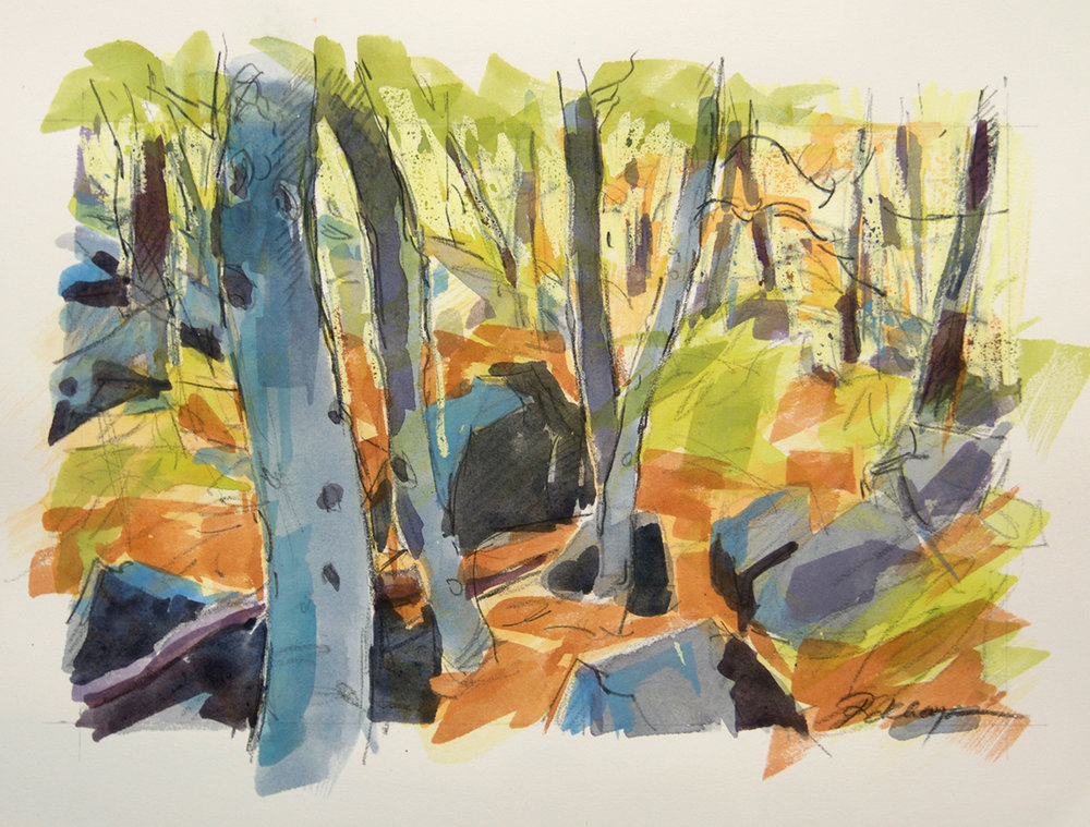 Beech Trees & Boulders