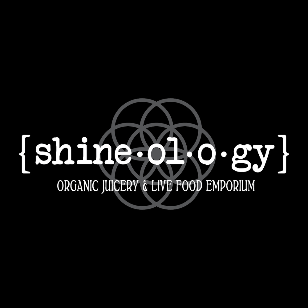 shineology-logo-mini.jpg