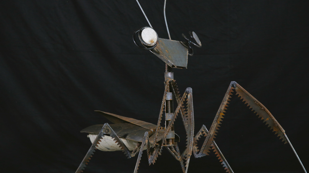 Mantis (Turned).jpg