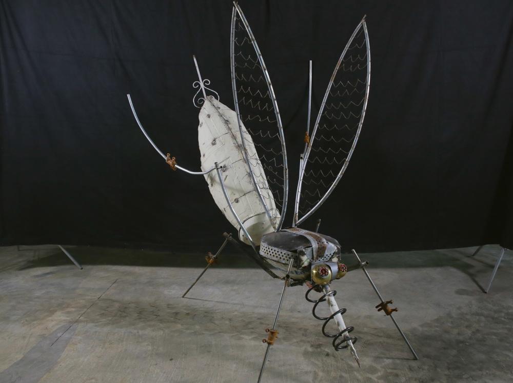 Mosquito (Full).jpg