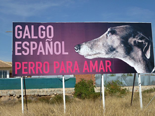Location: IKEA Murcia, Dutch Galgo Lobby, Photography & Design: Dutch Galgo Lobby UPDATE — STOLEN / ROBADO now in Ronda Sur Murcia.