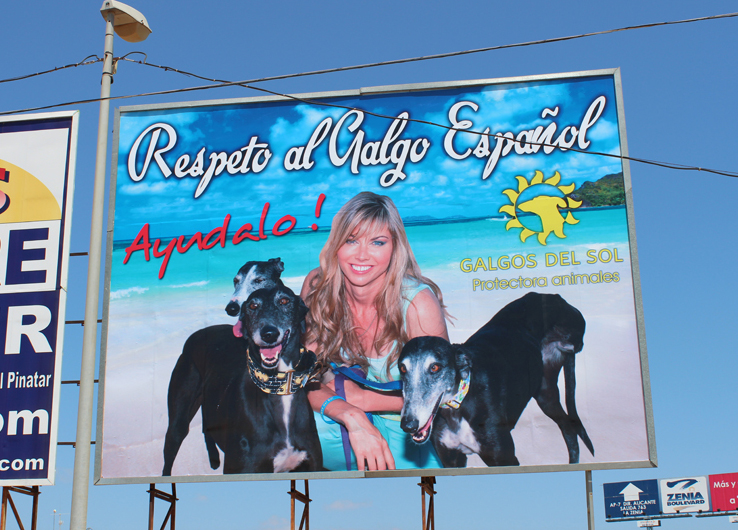 Location: Cc319 auto via in Pozo Aledo.It was decided by the volunteers that the president would be featured on the next billboard. So here is Tina with Ella, Javi and Katie on the dual carriage way c3319 spreading the message — Respect the Galgo Espanol.