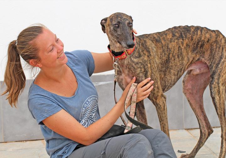 Apollo with volunteer Hannah.