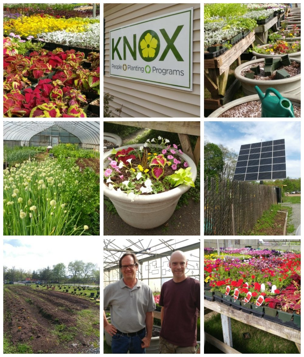 The Beautification Club's Steve and Deanna visits Ron at the Knox Foundation on May 9, 2018 to see what it takes to grow, plant, maintain and deliver the PARK ROAD PLANTERS.