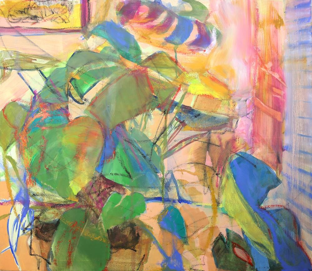 Lauren's Plant