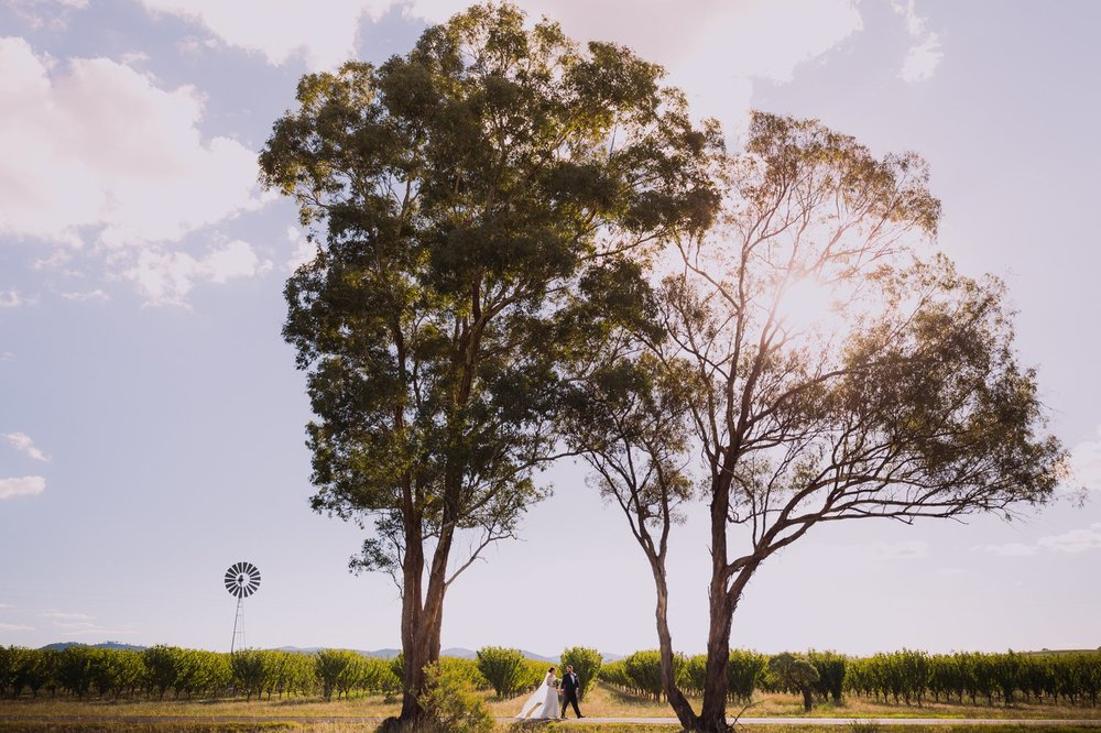 Vinegrove - Wedding Photography - Mudgee 1.jpg