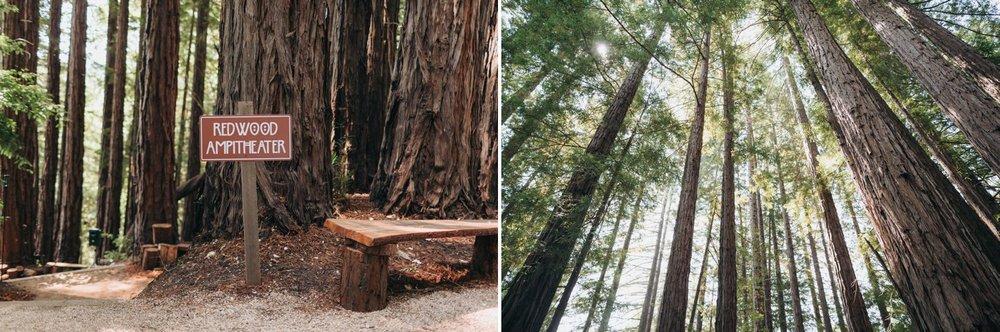 sequoia retreat wedding photography 2.jpg
