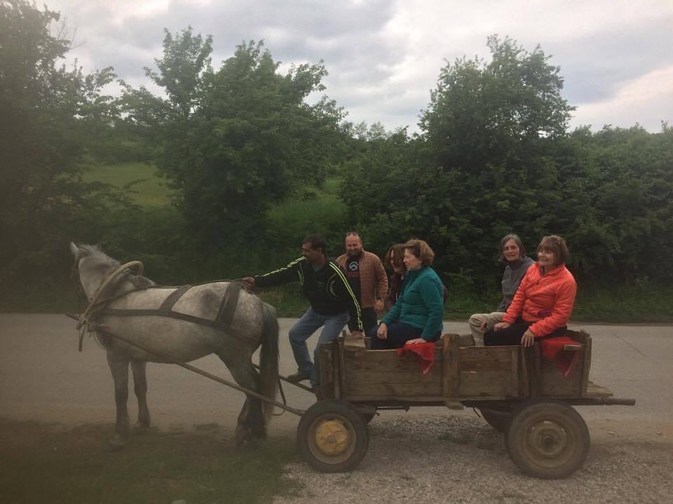Enjoying a horse drawn cart ride at The Center in Stolat