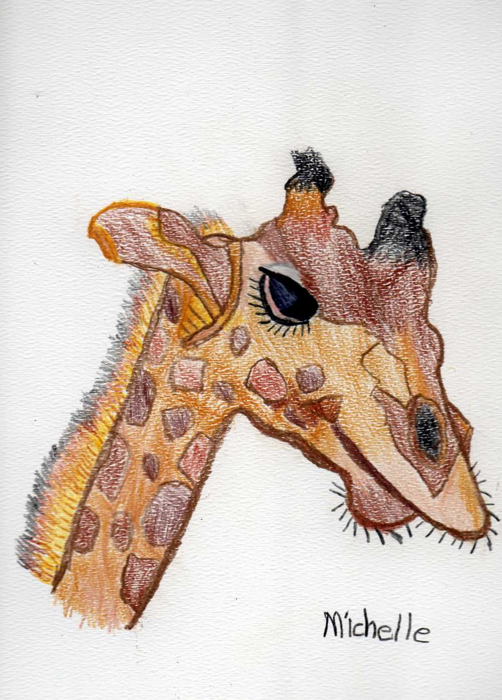 NC-Giraffe-2010-Color Pencils.jpg