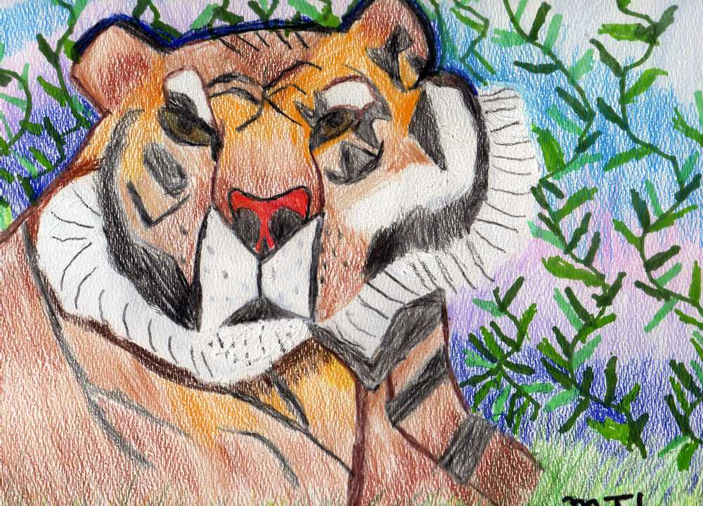 NC-Tiger-2010-Mixed Medium.jpg