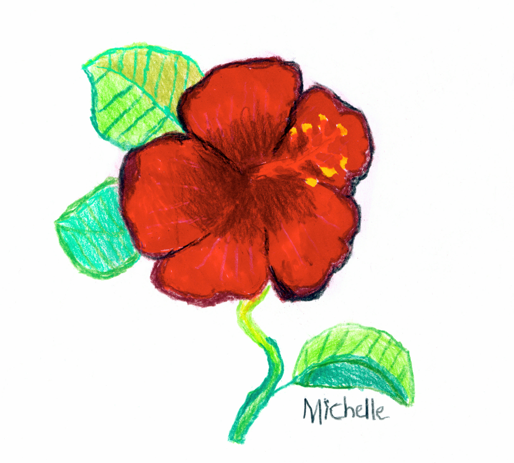 NC-Red Hibiscus-2012-Mixed Medium.jpg