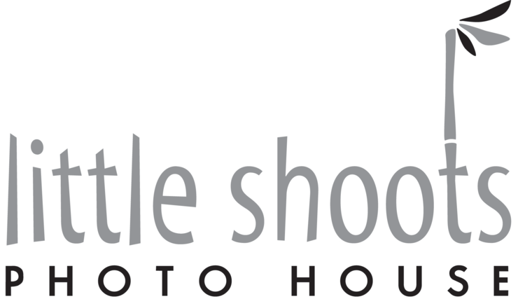 Little Shoots  Photo House
