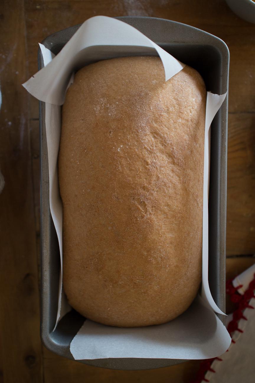 pan de caja (22 of 38).jpg