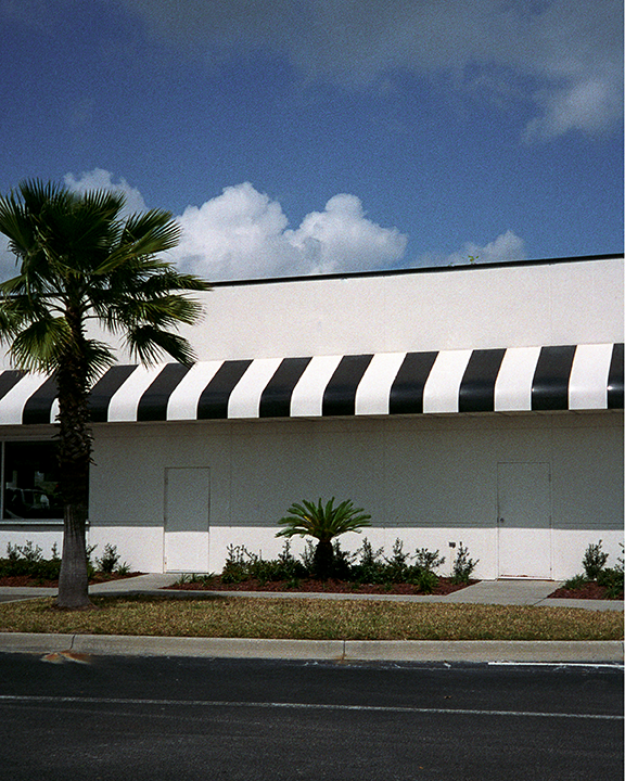 stripes-&-palm,-florida,-2008.png
