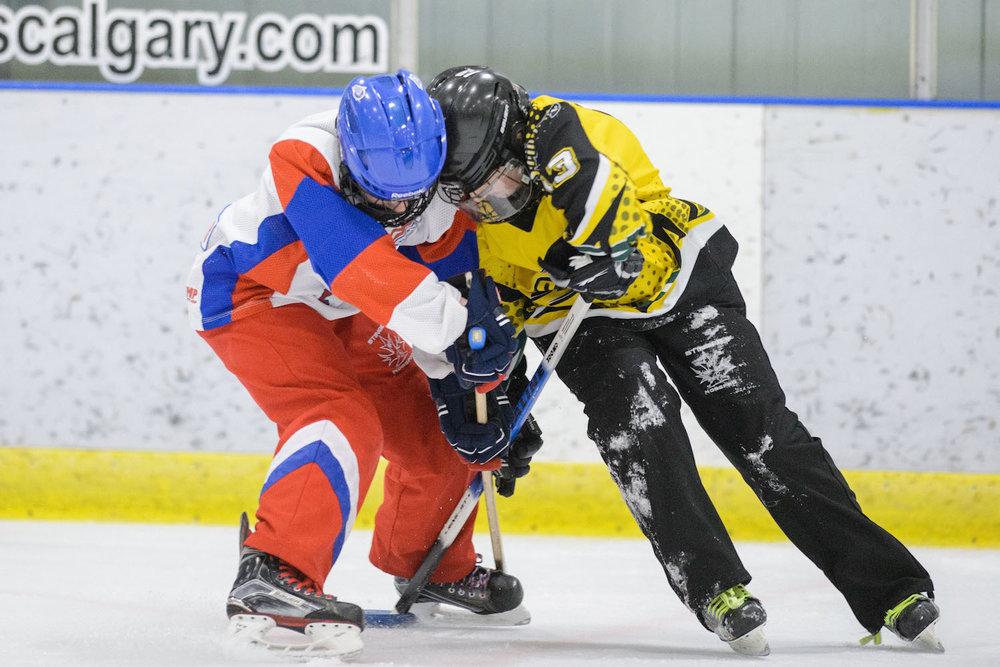 20170115 Regina Stingers vs. Calgary Impact Mawji 0124.jpg